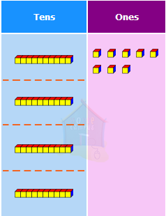 step-by-step division, third grade math